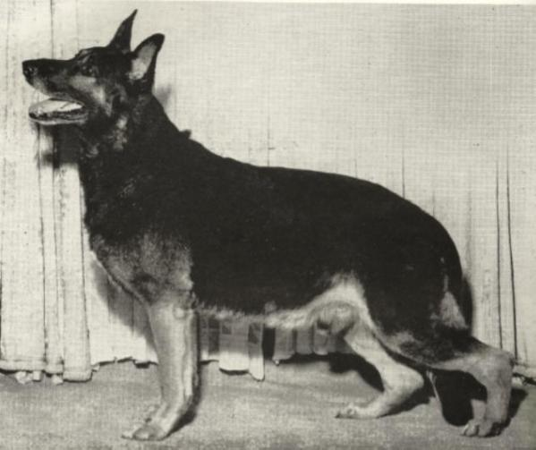 1953 GV CH Alert of Mi-Noah's ROM image