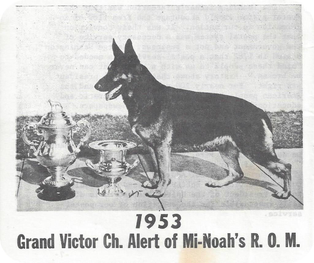 Grand Victor Ch Alert of Mi-Noah ROM with GV trophies image