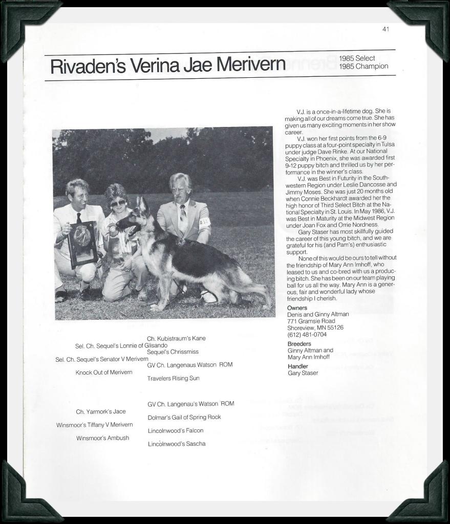 Verina Jae - GSD Review Best of 1985 image