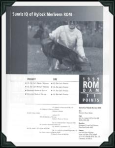 IQ German Shepherd Dog 1999 ROM Dam image