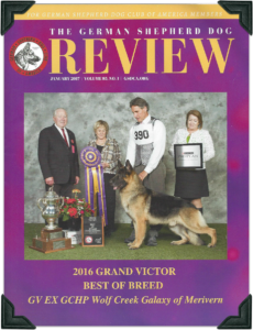 2016 Grand Victor CH Wolf Creek Galaxy of Merivern Jan 2017 image