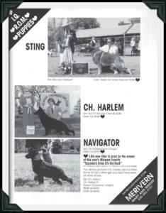 GSDC Review Ad sting harlem navigtor image