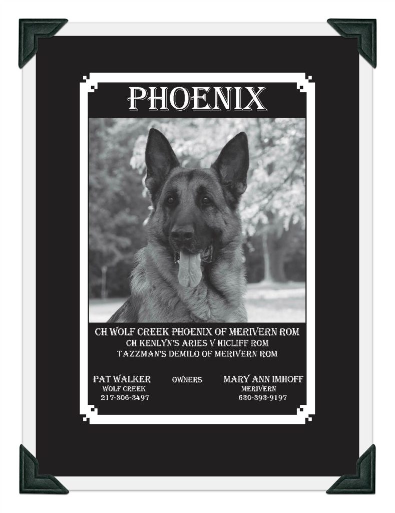 Phoenix GSDC Ad Page 1 image