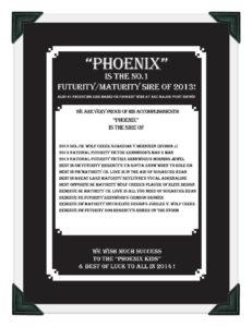 Phoenix GSDC Ad Page 2