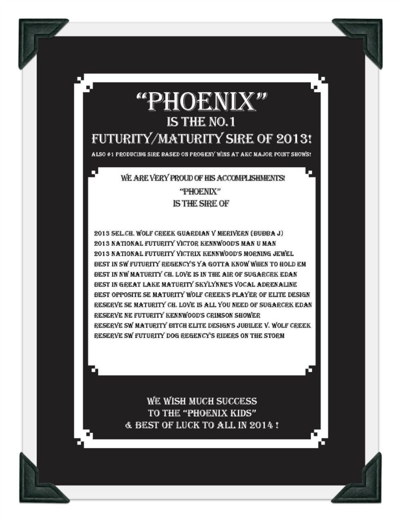 Phoenix GSDC Ad Page 2